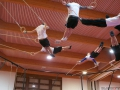 Swissrings Training Gymotion 149