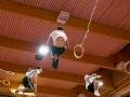 Swissrings Training Gymotion 47